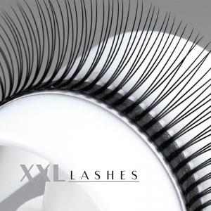 W-Lashes - type 3D - 300 pcs