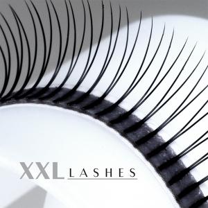 Y-Lashes - 2D - 320 pcs